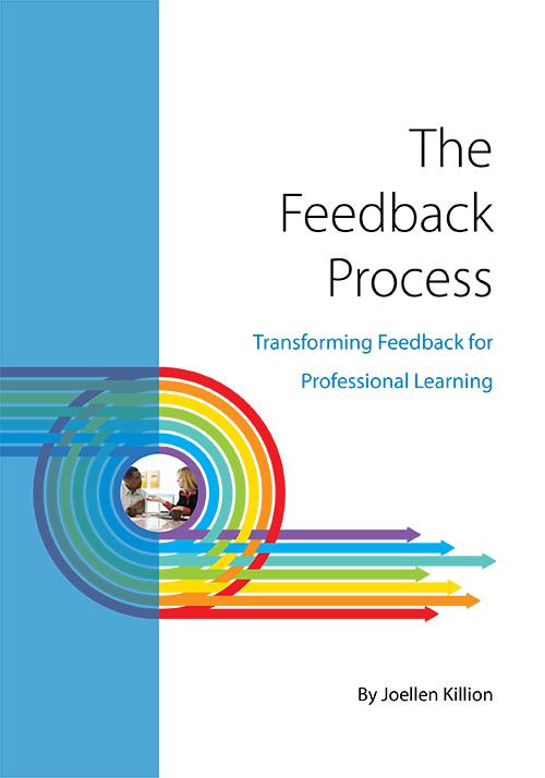 the-feedback-process